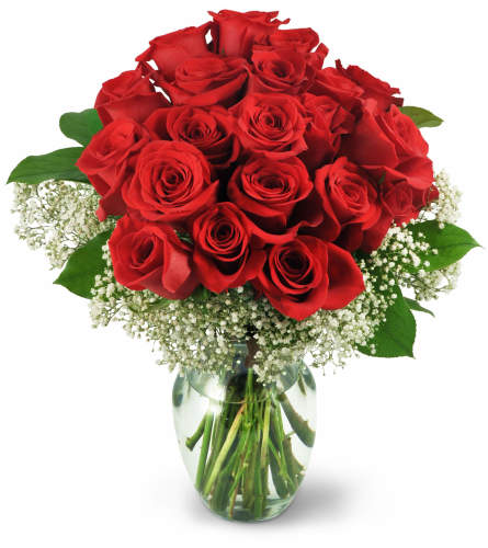 24 red roses for valentine